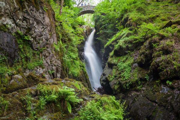 Aira Force waterfalls