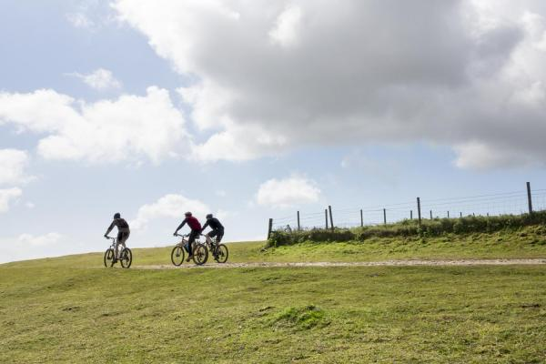 Mountain Biking in the South Downs