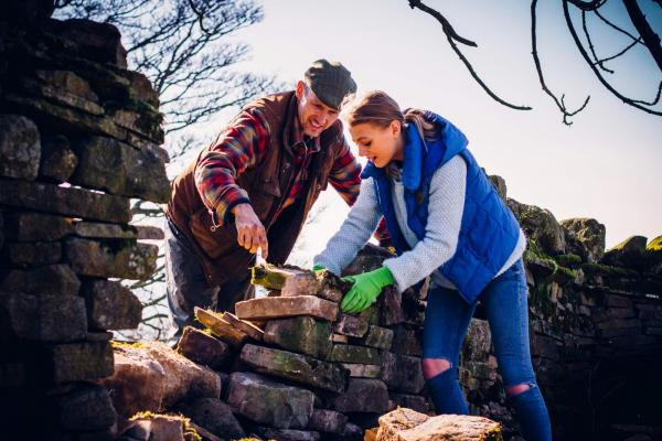 Instructing a youngster how to drystone wall