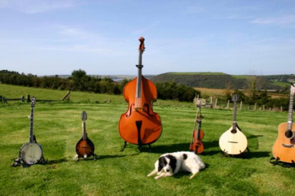Spot the Dog at Treyarnon Bay's Sunset Sessions