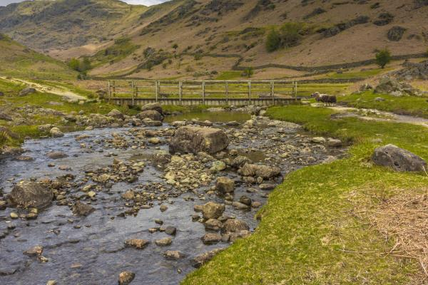 Walking and Rambling in Grasmere Butharlyp Howe