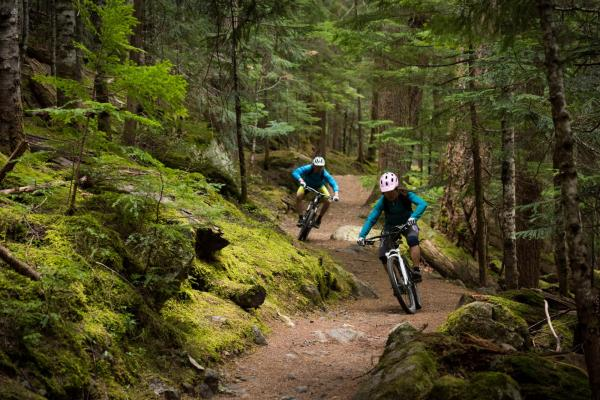 Mountain Biking in Betws-y-Coed