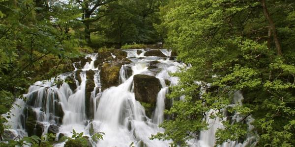 Swallow Falls Waterfall in Betws-y-Coed
