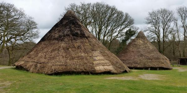 Thatched Huts at Castell Henllys