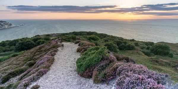 Headon Warren at sunset, near Totland