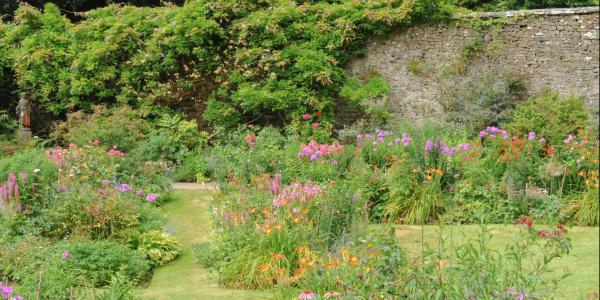 Docton Mill Gardens in Hartland, Devon