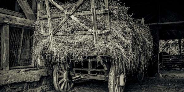 Historic hay wagon in barn