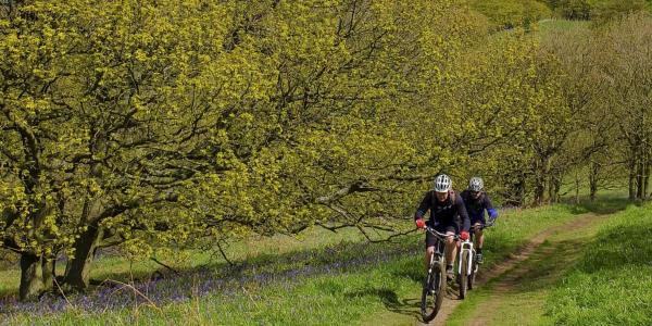 Mountain bikes near Roseberry Topping, Yorkshire
