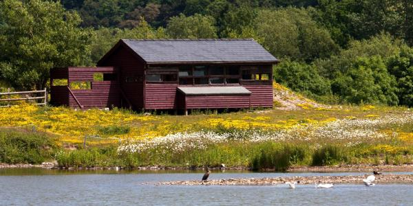 Conwy RSPB Nature Reserve