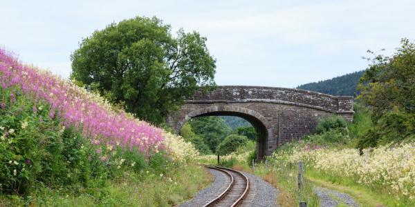 South Tynedale Railway