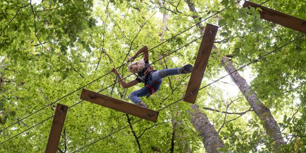 Tree top adventure in Betws-y-Coed