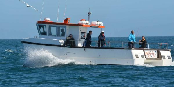 Snapper Charters