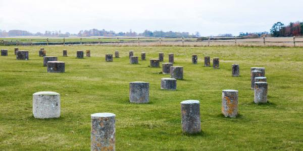 woodhenge cholderton